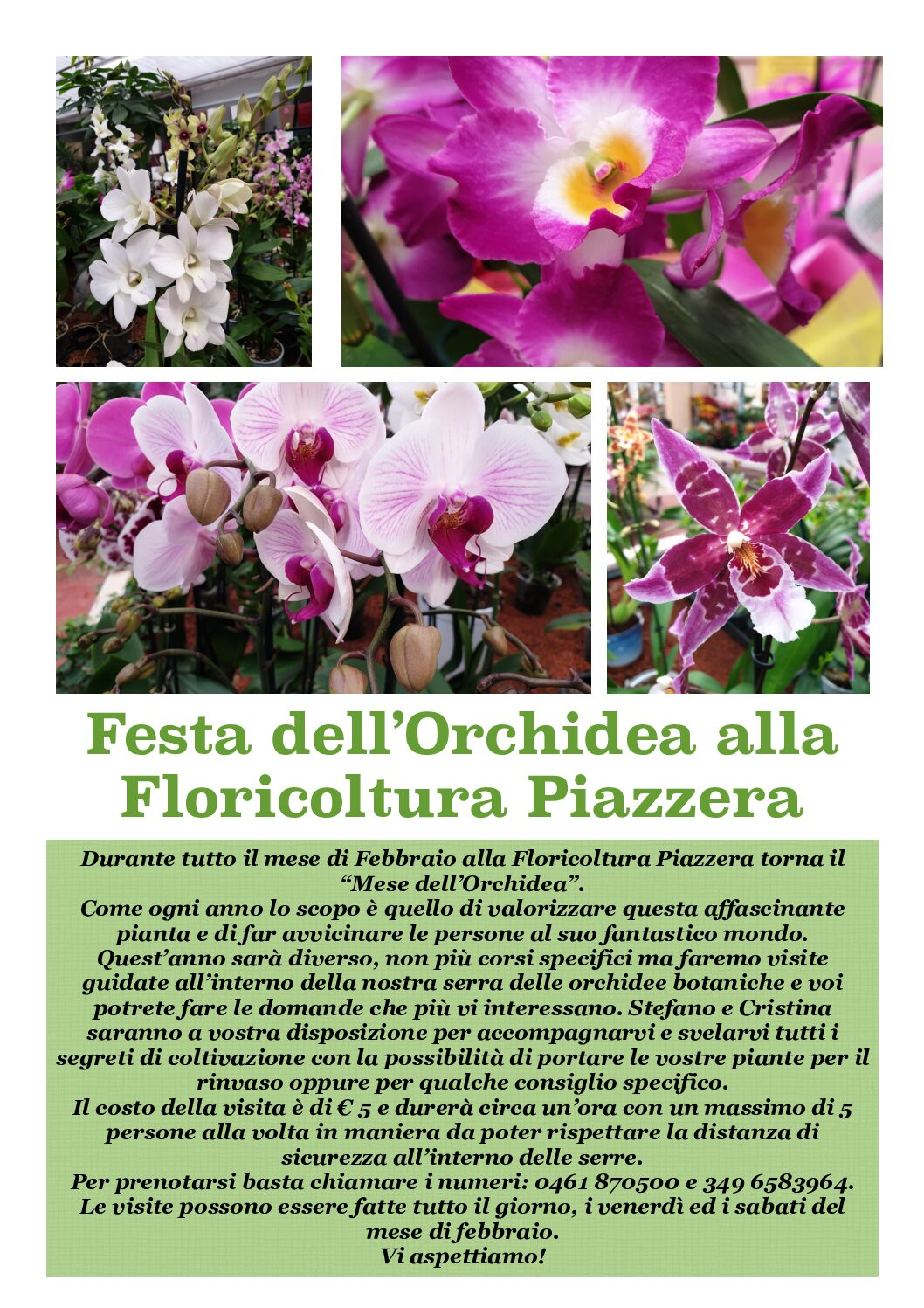 Festa dell'Orchidea 2021